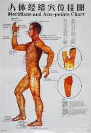 Colored Printing Chinese Acupuncture Trigger Point Acupoint