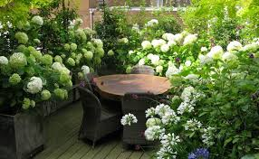 Small Picture The London Gardener Garden Design Services South West London