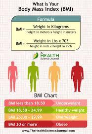 Body Mass Index Bmi Visual Ly