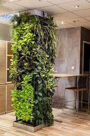 The ideal way to create a healthy and pleasant working environment is by  installing a green wall. It is a vertical surface that is covered with  living,