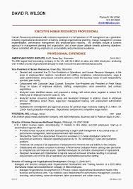 Executive Format Resume Template Inspirational Examples Summary For