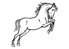 Kleurplaat Springend Paard Afb 10362 Images