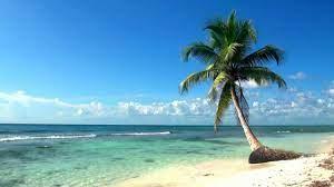 Relaxing Full HD Film Ocean Live ...
