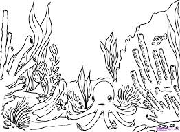 How To Draw A Coral Reef Step 8 Drawing Pinterest Coral