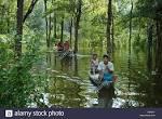 imagem de Manicoré Amazonas n-18