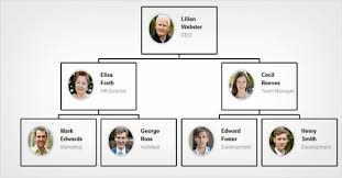 Easy Guide To Create Your Company Org Chart In Wordpress