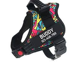 <b>Custom dog harness</b> | Etsy