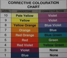 Color Royale Chart 78 Best Hair Color Swatches Images Hair Color Hair Color