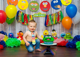Sesame Street First Birthday Cake Smash Photo Theme Ideas