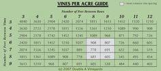 Vine Spacing Chart 86 Best Starting A Vineyard Images Vineyard Wine Making