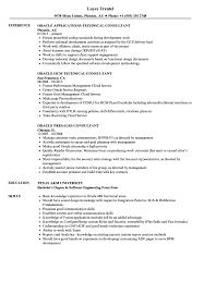 Oracle Consultant Resume Samples Velvet Jobs