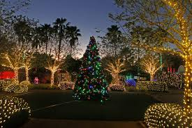 Largo Central Park Christmas Lights 2018 Heres Where To See Christmas Lights In Tampa Bay