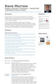 Sr. Content Marketing Strategist Resume samples