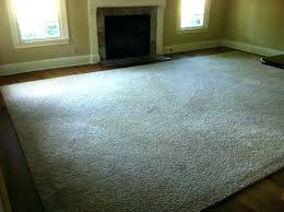 12 x 15 area rug epic home x area rugs