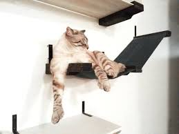 chic cat furniture. Fine Cat Lotus Cat Tree Large Size Of Furniture Instructions Designer  Chic Vesper  On Chic Cat Furniture G