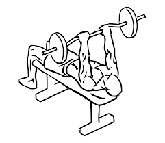 Decline Barbell Bench Rows Thick Grip  Banded Speed Decline Decline Barbell Bench