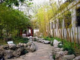 Small Picture Photo of bamboo in the garden number 5174 Gardening Pinterest