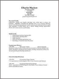 Quick Cv Template Professional Resume Templates