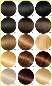 Lace Front Color Chart Wig Hair Color Chart 1793 Hair Color Chart Tutorials