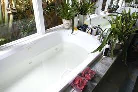 best way to clean bathtub jets and plants how to clean whirlpool bathtub jets
