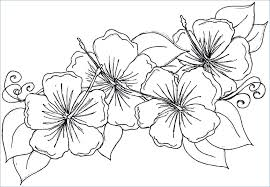 coloring pages flowers and hearts in a vase daisy flower page