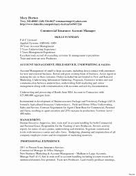 Service Delivery Manager Resume Sample Beautiful Resume Samples