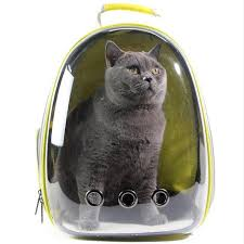 Résultats de recherche d'images pour «how let a cat outdoor backpack»