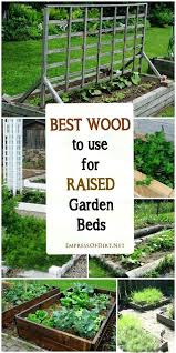 best wood for raised garden beds what is the best wood to use for raised garden best wood for raised garden beds