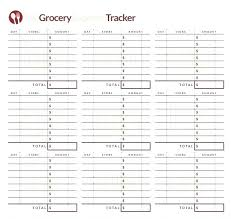 Tracking Expenses In Excel Daily Budget Spreadsheet Tracker Excel Template Expense