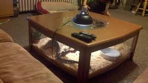 lovely terrarium coffee table with snake terrarium snakes and coffee tables on