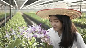 best jobs for teens adhd ld trouble math teenage girl tending plants in a greenhouse