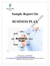 sample report on business plan by instant essay writing  instant essay writing toll no 1 213 929 5632 e mail help