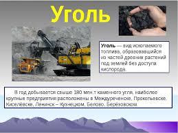Презентация Полезные ископаемые Кемеровской области скачать  Уголь вид ископаемого топлива образовавшийся из частей древних растений по