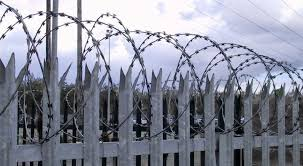 <b>Security</b> Steel <b>Palisade Fences and</b> Gates in Corrugated Pales - SP ...