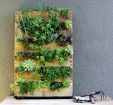 Small Picture Indoor Garden Ideas Garden ideas and garden design