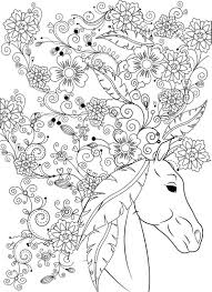 Beautiful Horse Adult Coloring Book Stress