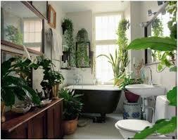 Plant Interior Design Best Decoration