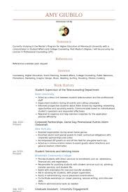 Student Supervisor Resume Samples Visualcv Resume Samples Database