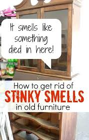 Remove Musty Smell From House 4 Tips For Getting Rid Of Mildew Within How  To Get In Prepare 13 ...