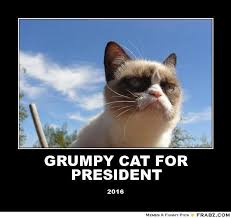 GRUMPY CAT FOR PRESIDENT... - Meme Generator Posterizer via Relatably.com