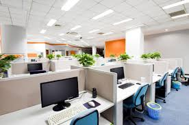 office with cubicles. 3 Office Cubicle Layout Tips To Maximize Your Space Office With Cubicles