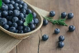 Slikovni rezultat za blueberries