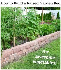 how to build a raised garden bed for awesome vegetables