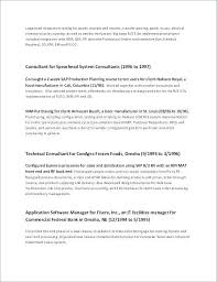 Resume Format Google Docs Stunning Functional Resume Template 48 Combination Resume Examples Free