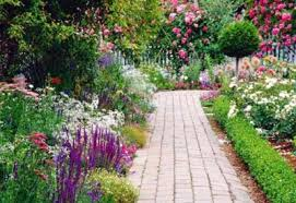 Small Picture Rose Gardening Made Easy Types Of Roses Garden Tips For Caring
