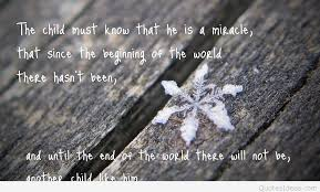 Snowflake Love Quotes Inspiration Best Winter Snowflake Quote With Wallpaper