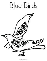 Eastern Bluebird Coloring Page Beautiful Top 1 Query In Free Eastern