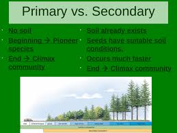 Primary And Secondary Succession Venn Diagram Ecological Succession Primary Succession Secondary Succession