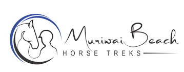 Muriwai Beach Horse Treks - Horse Treks Auckland