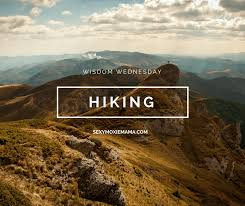 Hiking Quotes Interesting Wisdom Wednesday Hiking The Moxie Mama